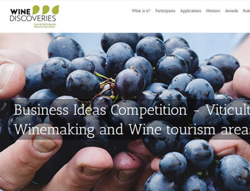 Building a website for a business ideas competition